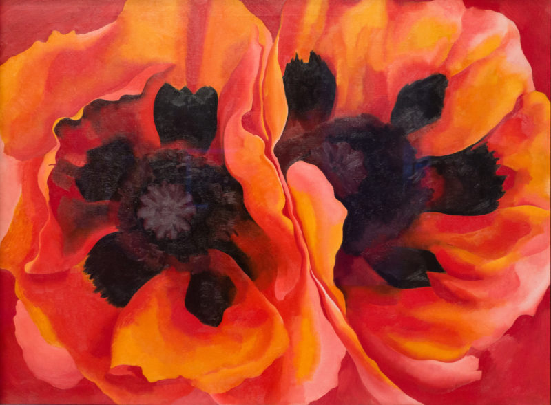 Georgia Okeeffe Poppies